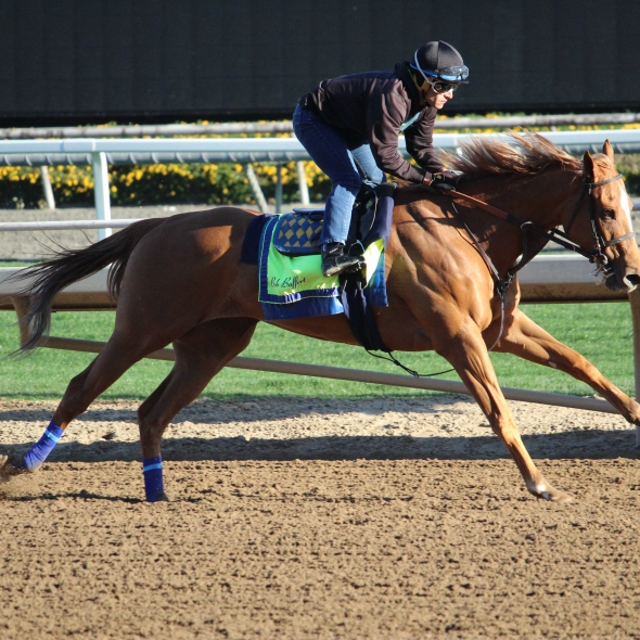 Bob Baffert's Der Lu worked 4 furlongs