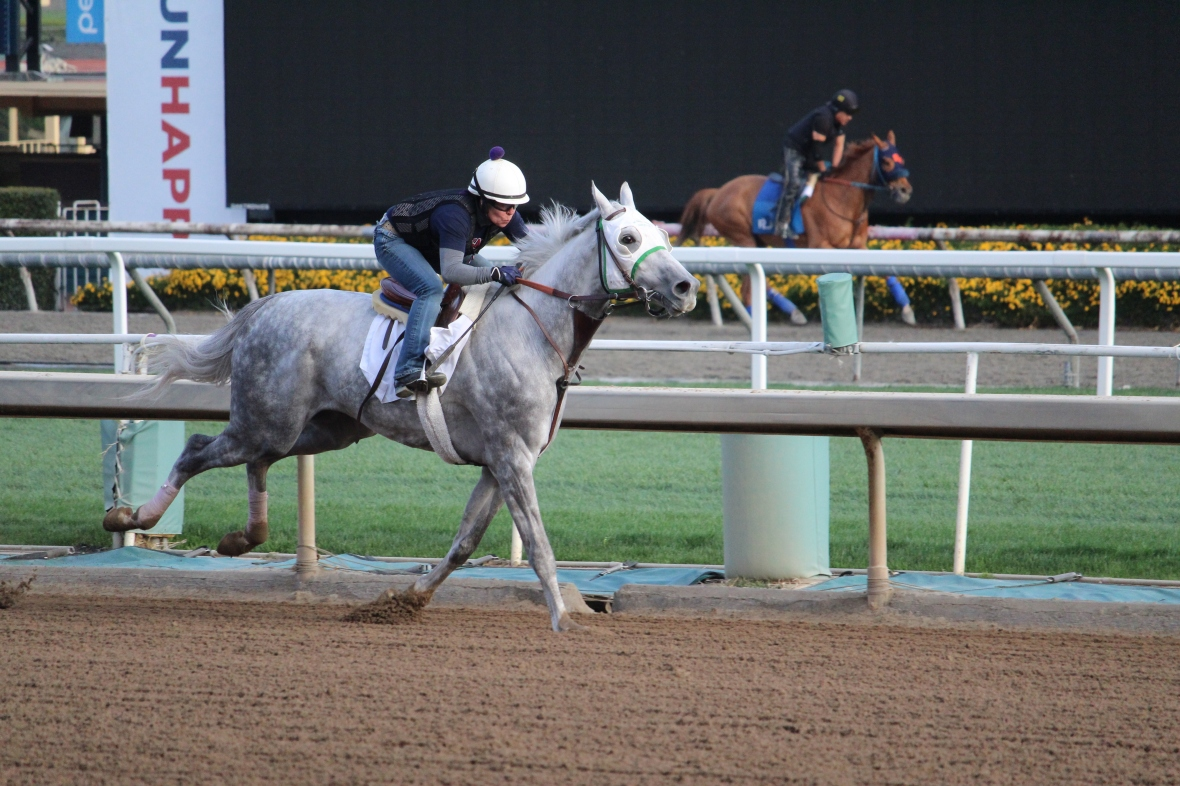 Springs Eternal worked 5 furlongs