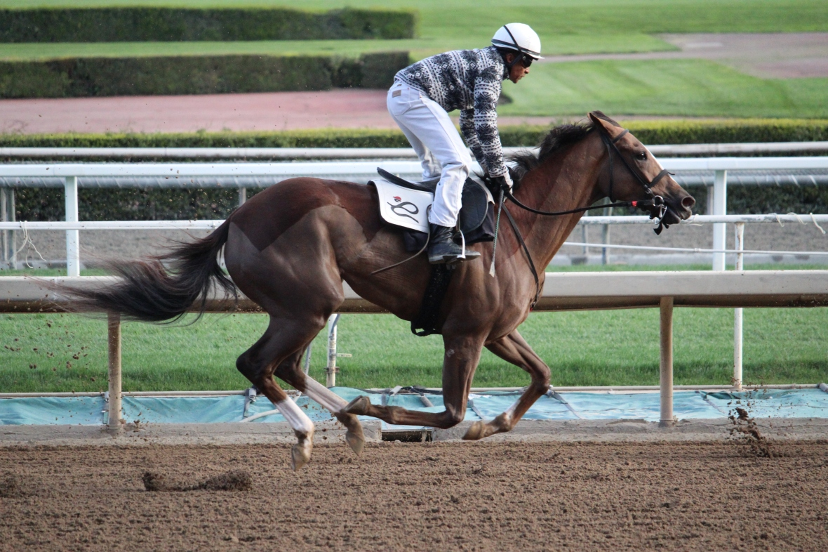 Diva in Charge working for Peter Eurton