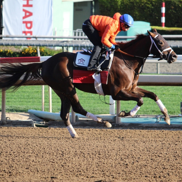 KP Whirlwind worked 5 furlongs in 1:03.20 for trainer Jeff Mullins.