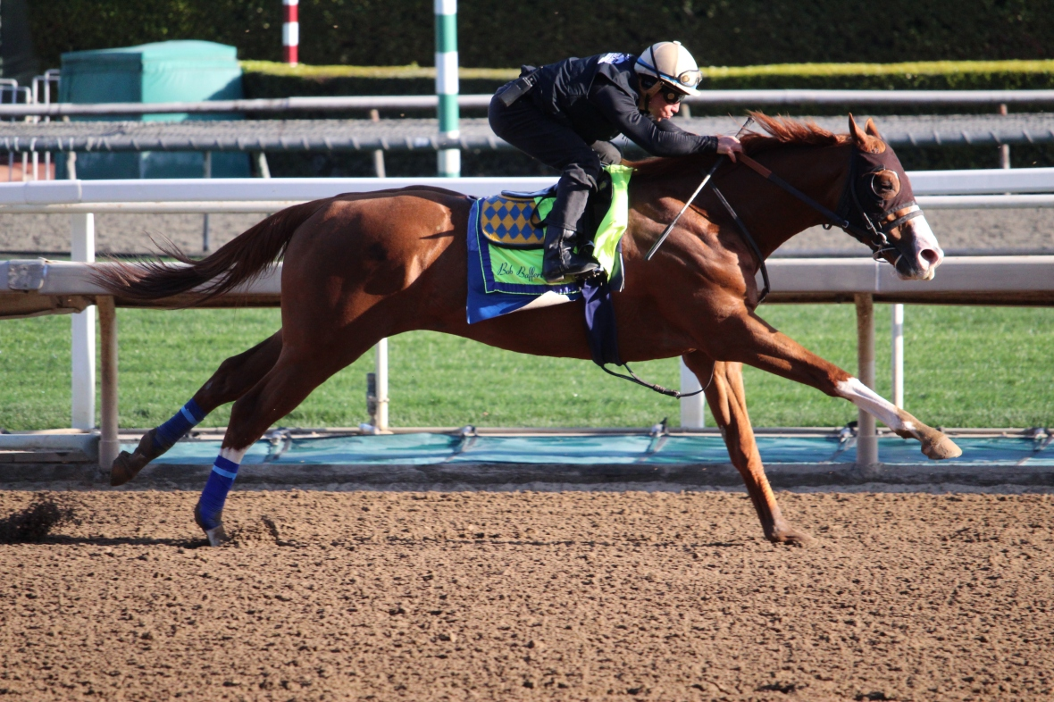 IMG_0167 - Baffert - Improbable