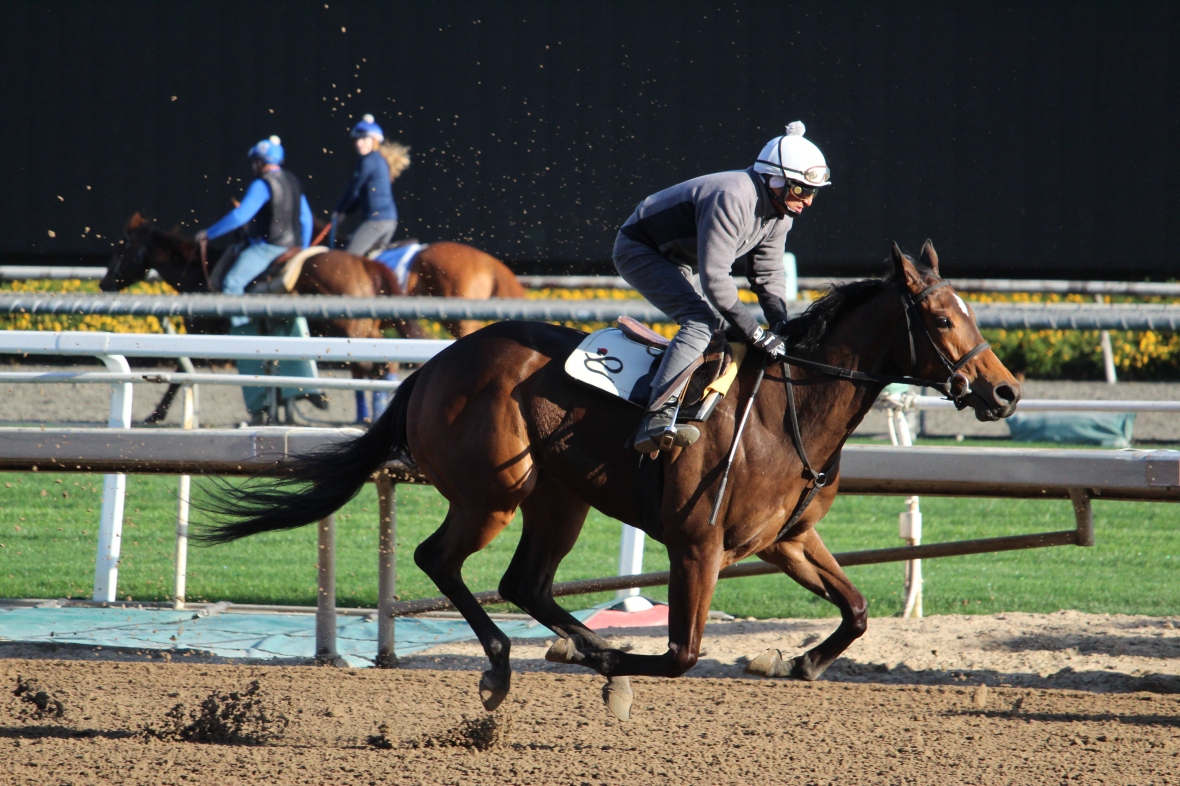 Peter Eurton's Powerfulattraction worked 5 furlongs in 1:01.60.