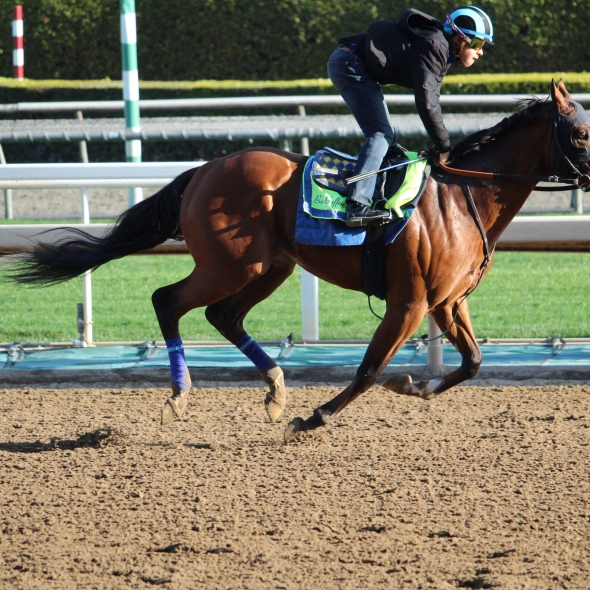 Unraced JZ My Man worked 5 furlongs in 59.80 for trainer Bob Baffert.