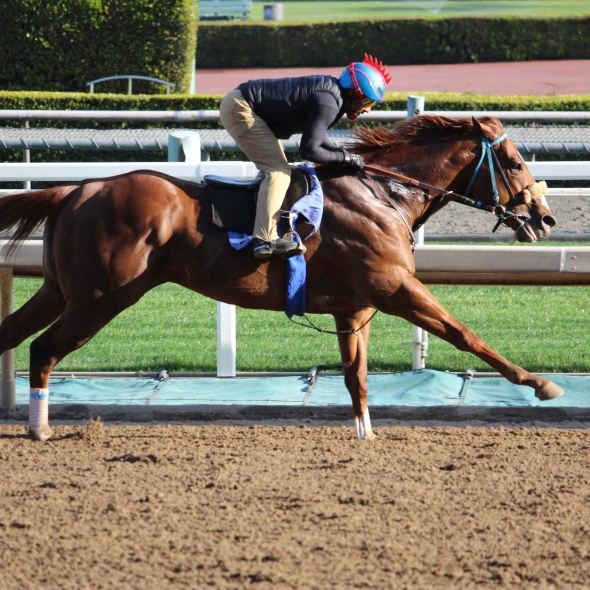 Lanzarote worked 4 furlongs in 48.20 for John Shirreffs.
