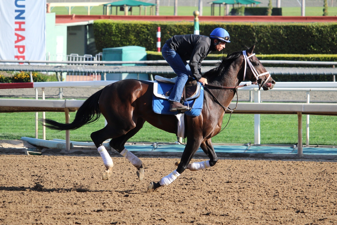 Kiaran McLaughlin's Endorsed galloping in prep for the Santa Anita Handicap.
