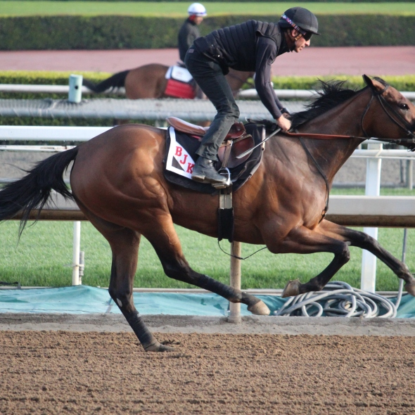 Road Rager went 5 furlongs in 1:00.80 this morning for trainer Brian Koriner.