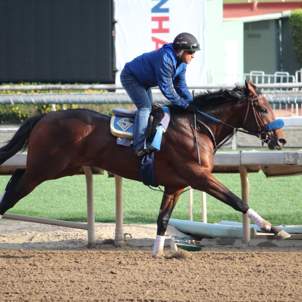 John Sadler's Best Chance worked 4 furlongs in 48.60 this morning.