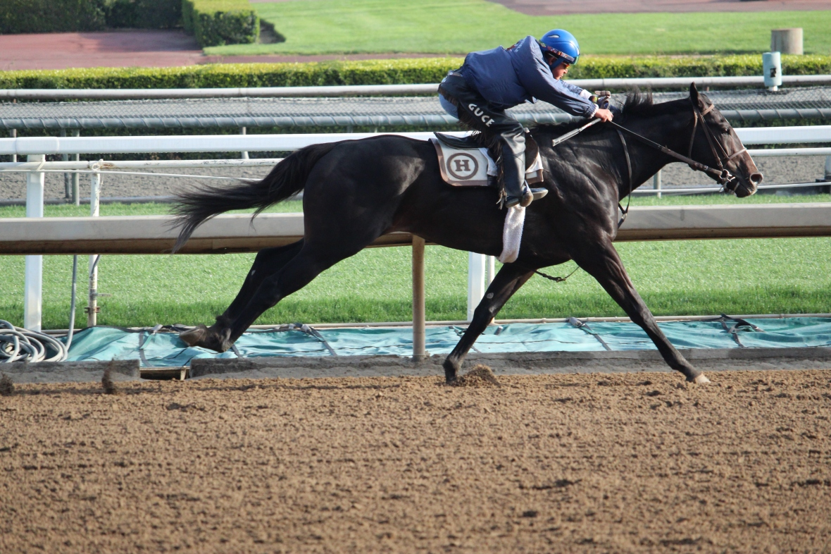 Play Money worked 6 furlongs in 1:14.60 for trainer David Hofmans.
