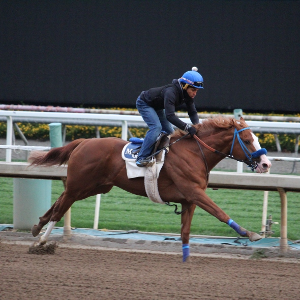 Mark Glatt's Eastern Ocean worked 4 furlongs in 48.00.