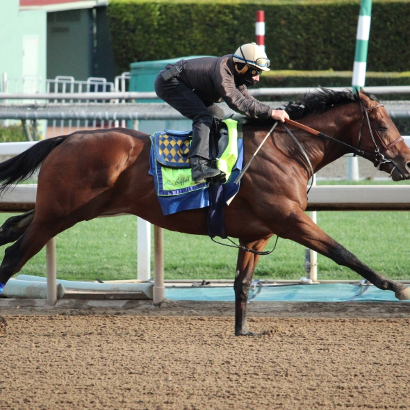 Speedy Nadal worked 7 furlongs in 1:25.20 for trainer Bob Baffert.